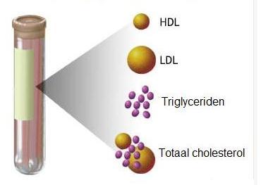 Totaal cholesterol = HDL + LDL + triglyceriden